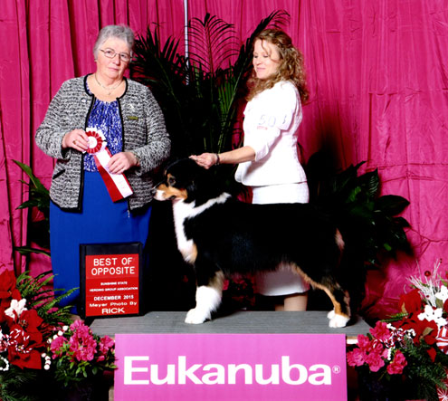 December 2015 Parr Eukanuba Best of Opposite